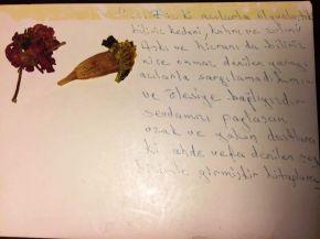 Sararmış bir mektubunöyküsü